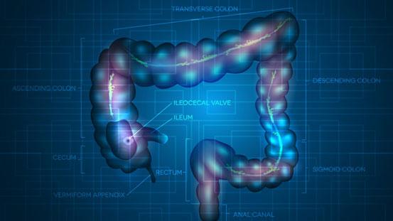 Come far stare bene intestino